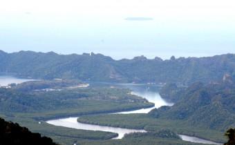 ランカウイのおへそ、ラヤ山。ジャングルに住む動物たちに会える!かも