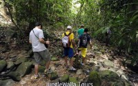 トレッキングツアー (Jungle Walla Tours)